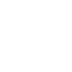 Icon of a paw