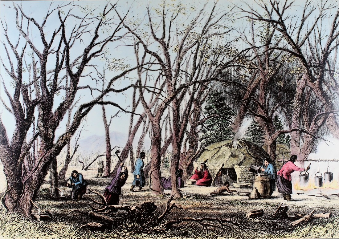 An illustration shows a Native American camp under some trees. On the right, there is a fire with three large pots suspended over the flames. A person is tending it while another person pours something into a large barrel. A few people sit and stand in and outside of a wigwam next to the fire. The left side of the painting shows tress with few leaves and people working with them. The people are chopping, gathering, and kneeling near the trees.