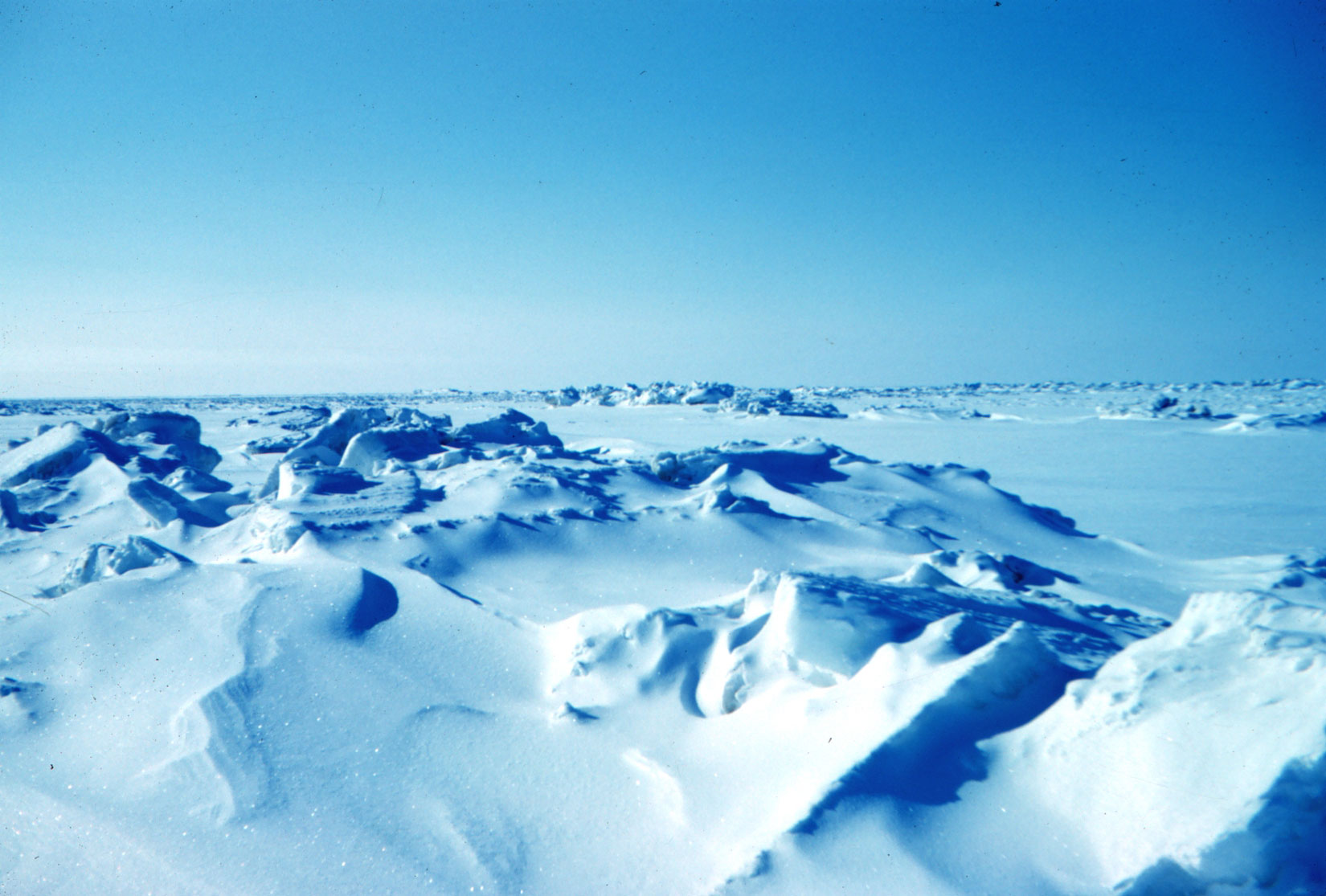 A color photograph shows a wide open blue sky and ice and snow far into the distance. Some areas of snow and ice are flat and some have ice jutting up and making small hills.